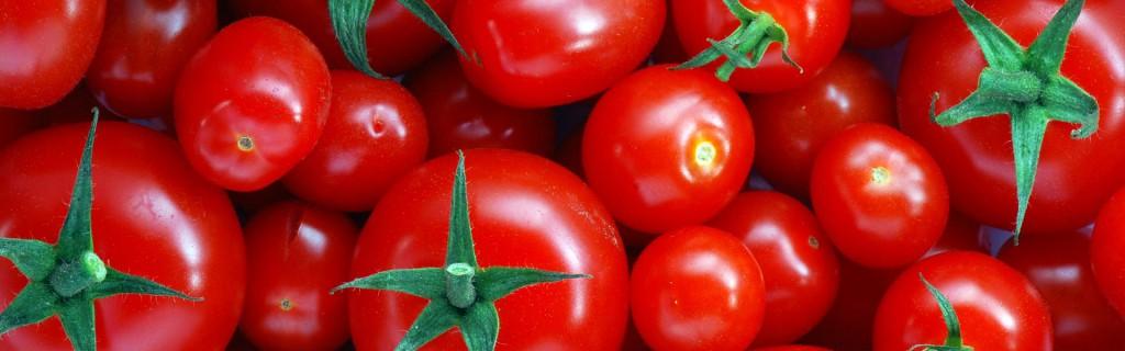 tomaten-slider-test-1